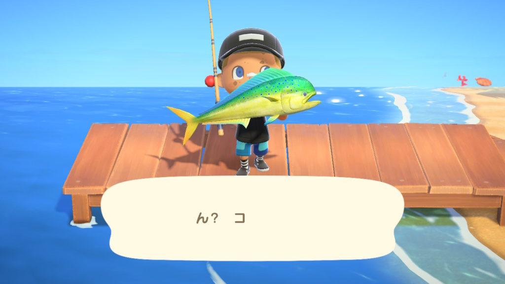 シイラを釣り上げた時の桟橋の写真。晴れている昼間。